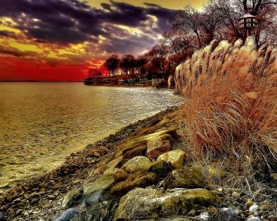 Lake Mendota Shore