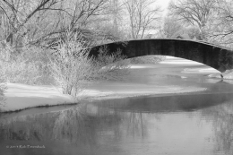 Tenney Park Bridge