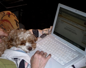 Asleep at the keyboard