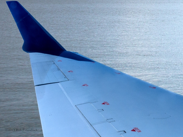 Wing and water