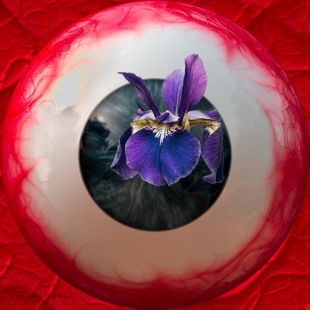 Eyeball with Iris-2