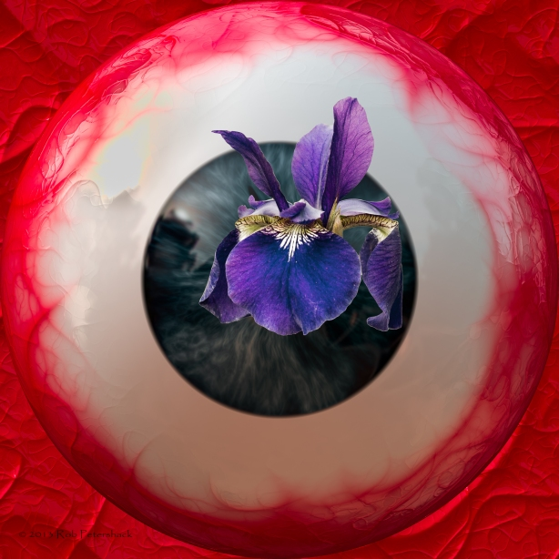 Eyeball with Iris-2