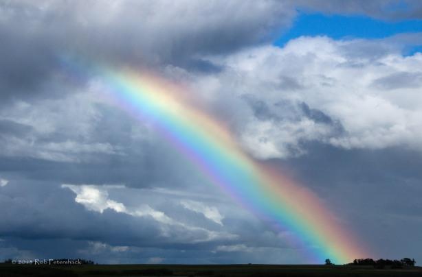 The Rainbow-2
