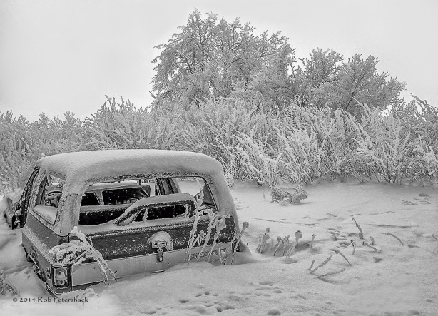 Chevy and Hoarfrost - January 01, 2014 - 2