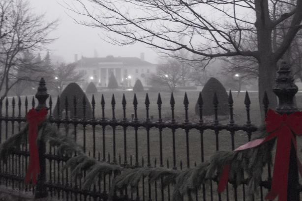 F is for Fence in the Fog 2