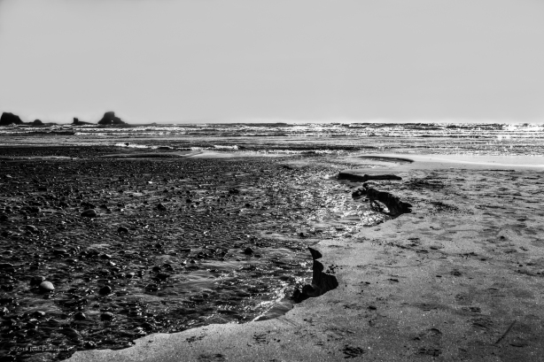 Shore and Ocean - April 16, 2013 - 0228